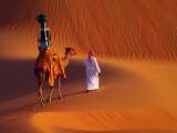 Bild: Das Google-Kamel auf großer Tour. Auf dem Rücken befindet sich die 360 Grad-Street View-Kamera.
