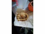 Bild: Hat KFC in den USA versehentlich eine Ratte frittiert?