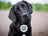 Bild: Das Interface der Web-App ist ansprechend gestaltet und auf die nötigsten Informationen beschränkt.