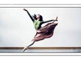 Bild: Pixelmator hat eine Version für Apples iPhone angekündigt und den Preis der iPad-Variante für einen begrenzten Zeitraum im App store reduziert.