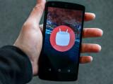 Bild: Android 6.0 Marshmallow auf dem Google Nexus 5.