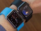 Bild: Gut, dass jetzt erst der Sommer beginnt: Ein Monat lang habe ich die Apple Watch Sport und die Apple Watch im Wechsel am Arm getragen.