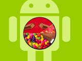 Bild: Android 5/5.1 Lollipop: Immer mehr Nutzer bauen auf Googles neuestes Betriebssystem.
