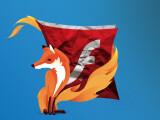Bild: Firefox blockiert den Flashplayer standardmäßig
