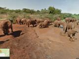 Bild: Über Google Maps könnt ihr eine virtuelle Safari durch das Nationalreservat Samburu in Kenia unternehmen.