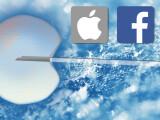 Bild: Apple und Facebook unterstützen Frauen auf Ihrem Karriereweg.