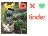 Bild: Frühlingsgefühle pur: Mit Tinder findet ihr mobil und schnell Kontakt zu anderen Partnersuchenden. Netzwelt/Pressebild Tinder