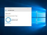 Bild: Windows 10 gibt über die Datennutzung der letzten 30 Tage Auskunft.