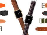 Bild: Bereits vor dem offiziellen Verkaufsstart der Apple Watch bieten Händler zahlreiches Zubehör an. Aber auch ein Blick auf die Crowdfunding-Seiten von Kickstarter und Indiegogo lohnt sich.