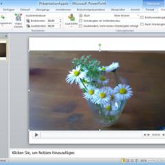 pdf in html einbinden wie bild