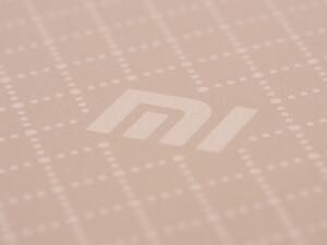 Die Smartphones des chinesischen Herstellers Xiaomi sind hierzulande nur über den Importhandel erhältlich.
