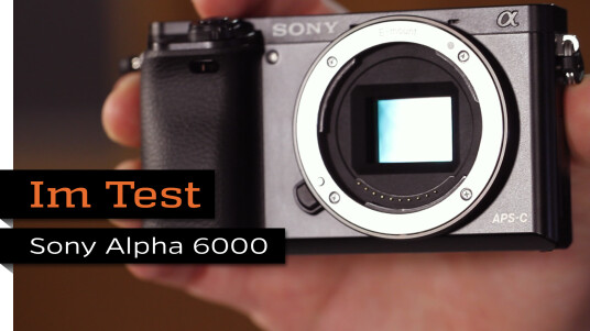 Sony Alpha 6000 Details