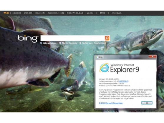 Das BSI warnt vor massiven Sicherheitslücken im Internet Explorer 6 bis 9.
