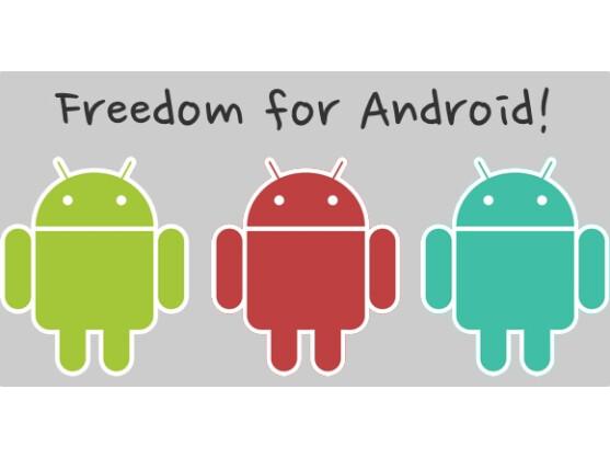 Erst nach Freischaltung des Root-Kontos ist Android wirklich frei.
