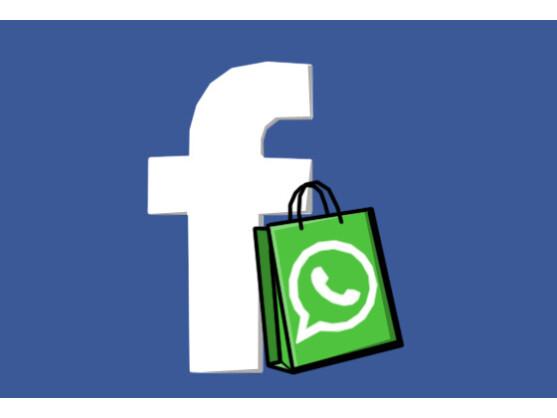 Facebook möchte angeblich WhatsApp kaufen.