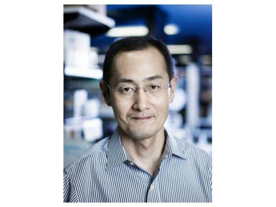 Auch der japanische Stammzellenforscher Shinya Yamanaka hat gute Chancen, den Millennium-Technologiepreis zu gewinnen.