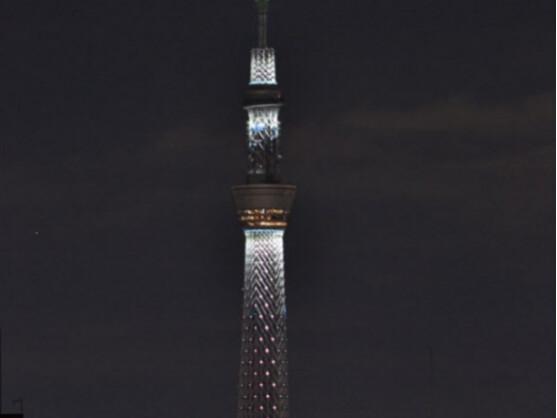 Der Tokio Sky Tree ist schon fast fertig.
