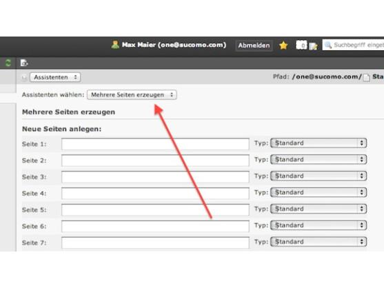 Für die Verwaltung mehrerer Webseiten sind viele Einzelseiten nötig.