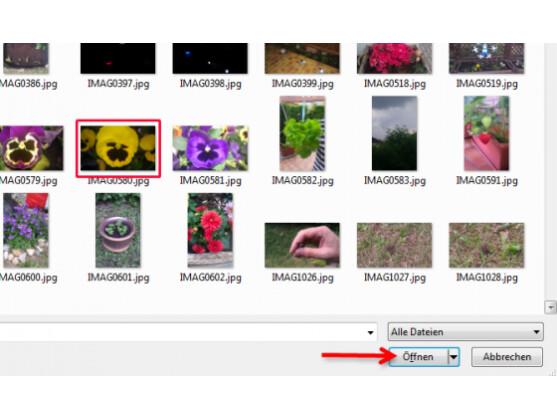 Bild-Datei vom PC auswählen.
