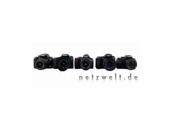 Von links nach rechts: Canon EOS 1000D, Pentax K200D, Nikon D60, Sony Alpha 350 und Olympus E-420.