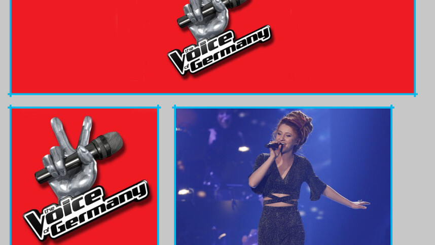 Voice Of Germany Online Stream