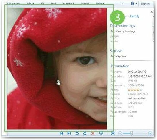 Window photo live gallery download