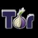 Tor Browser Bundle Logo