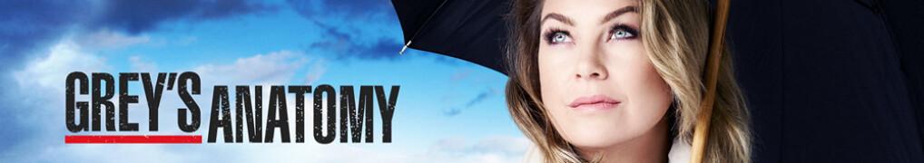 Greys Anatomy Staffel 15 Stream
