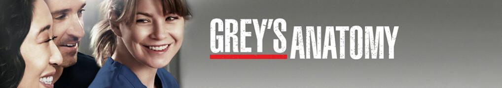 Episodenguide GreyS Anatomy