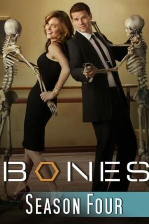 Episodenliste Bones