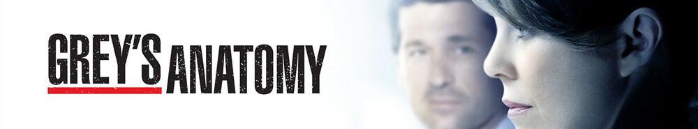 Greys Anatomy Staffel 5 Episodenguide Netzwelt